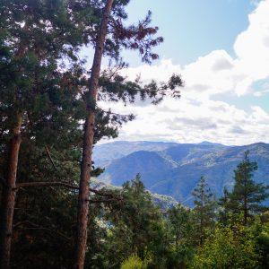 Кръстова гора – свято място с история