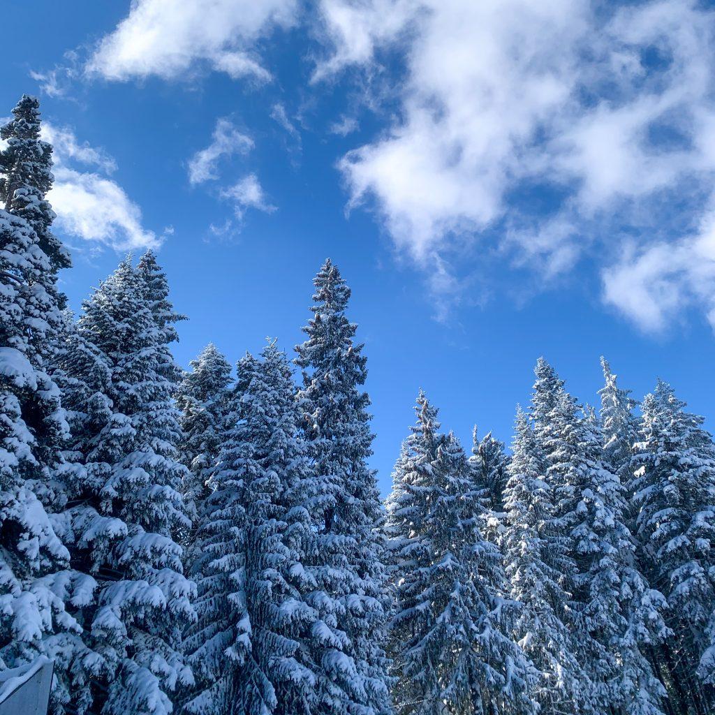 Какво да правим в Боровец, ако не караме ски?