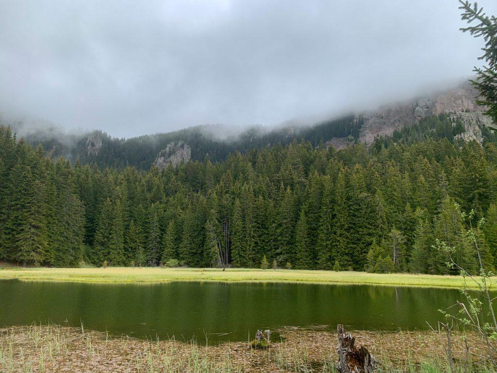 Тревистото езеро - част от групата на Смолянските езера